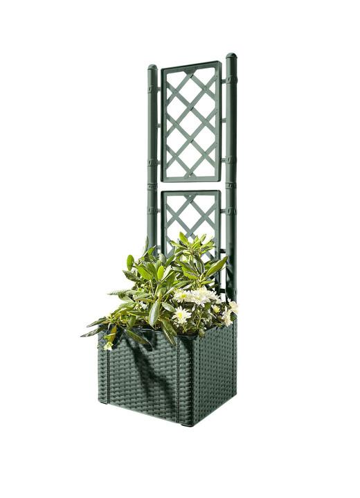 pflanzkasten mit spalierwand in verschiedenen ausf hrungen blument pfe und pflanzgef e. Black Bedroom Furniture Sets. Home Design Ideas