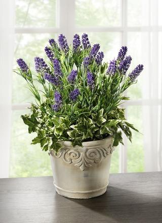 kunstpflanzen textilpflanzen online kaufen brigitte salzburg. Black Bedroom Furniture Sets. Home Design Ideas